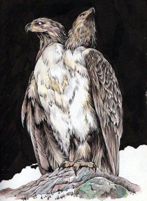 russian_eagle
